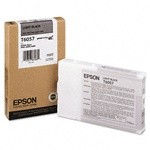 T605700   Epson  Light Black   110 ML - Product Image